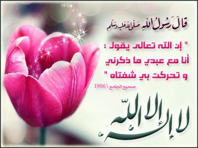 التواقيع الاسلامية 2013 36646.jpg