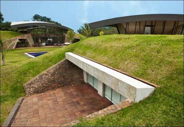 الخضراء الباراغواي 6866.jpg