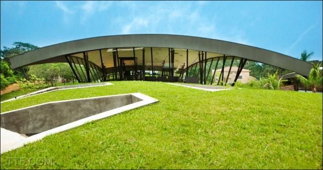 الخضراء الباراغواي 6868.jpg