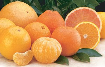 البرتقال.. 83684.jpg