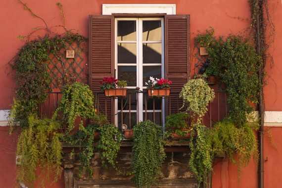 بلكونات بيوتنا الجميلة 134480.jpg