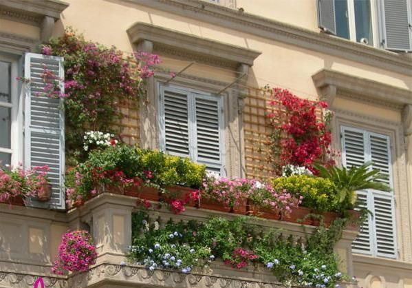 بلكونات بيوتنا الجميلة 134485.jpg