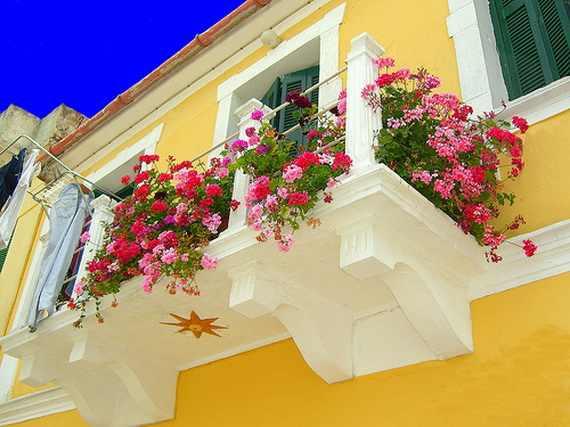 بلكونات بيوتنا الجميلة 134527.jpg
