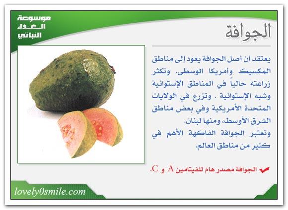 الجوافة ,اشجار الجوافة,فوائد الجوافة 210604.jpg