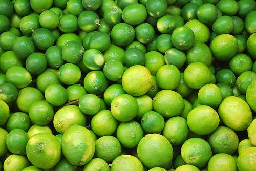 الليمون,معلومات الليمون,زراعة 257551.jpg