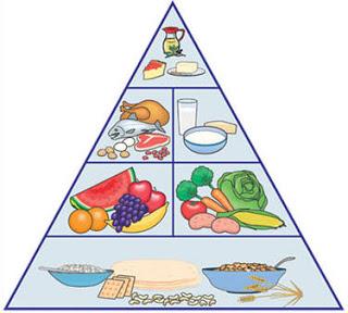 الغذائي 260511.jpg