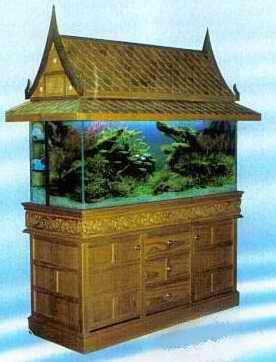اشكال جميله ومميزه من أحواض السمك 275645.jpg