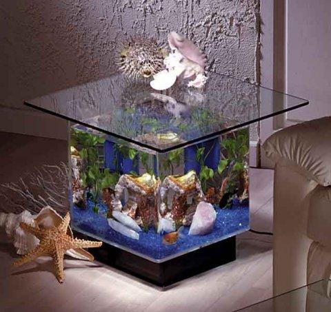 اشكال جميله ومميزه من أحواض السمك 275647.jpg