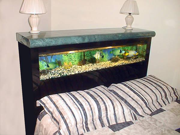 اشكال جميله ومميزه من أحواض السمك 275654.jpg
