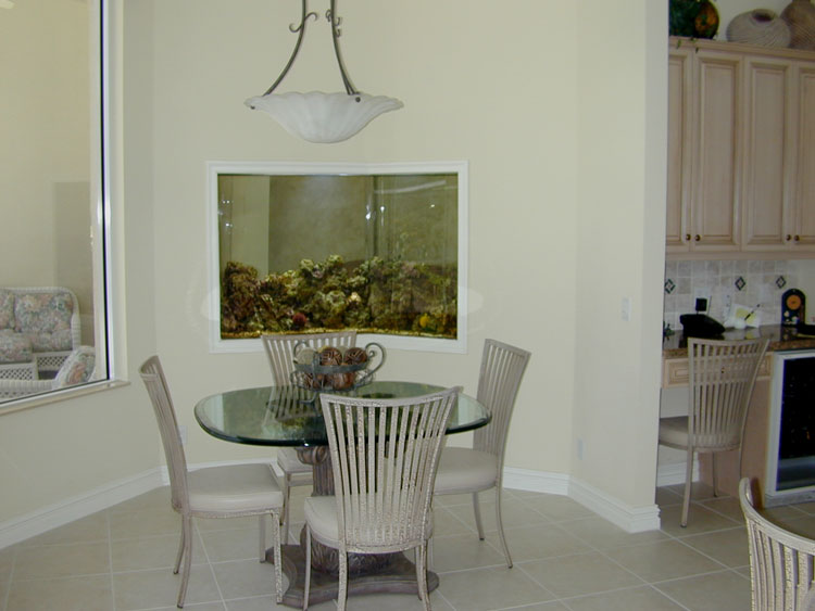 اشكال جميله ومميزه من أحواض السمك 275658.jpg