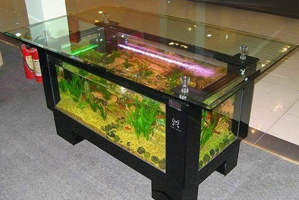 اشكال جميله ومميزه من أحواض السمك 275675.jpg