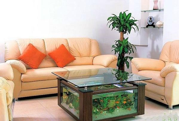 اشكال جميله ومميزه من أحواض السمك 275676.jpg