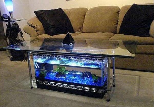 اشكال جميله ومميزه من أحواض السمك 275677.jpg