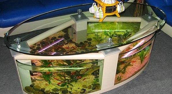 اشكال جميله ومميزه من أحواض السمك 275678.jpg