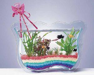 اشكال جميله ومميزه من أحواض السمك 275694.jpg