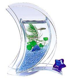 اشكال جميله ومميزه من أحواض السمك 275696.jpg