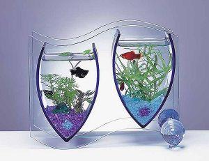 اشكال جميله ومميزه أحواض السمك