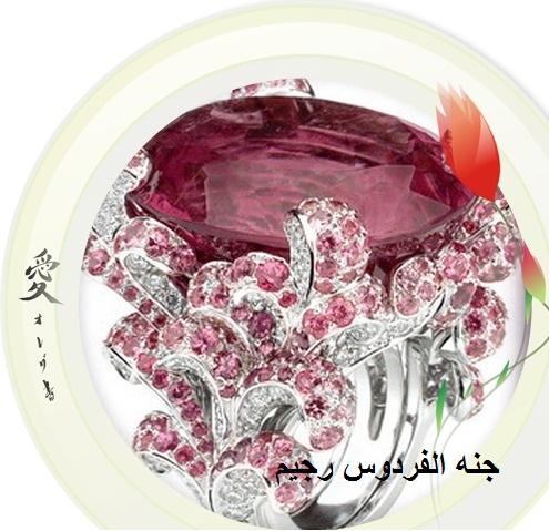 اجمل تشكيله اكسسوارات علشان العيد  لصبايا رجيم 287286.jpg