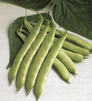 القيم الغذائية في الخضروات وفوائدها ومضارها 302546.jpg