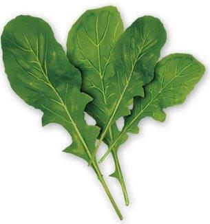 القيم الغذائية في الخضروات وفوائدها ومضارها 302556.jpg