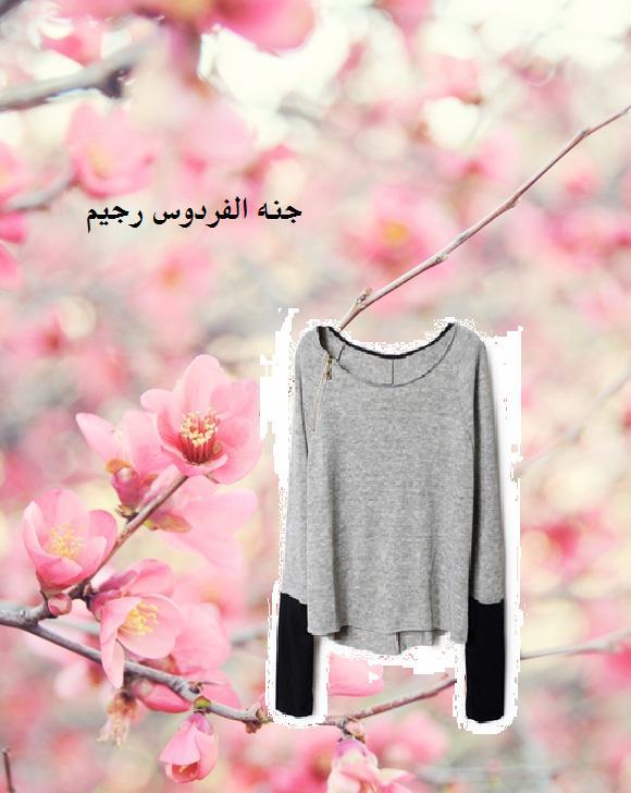 بلوزاتي الشتويه  الحلوه 329674.jpg