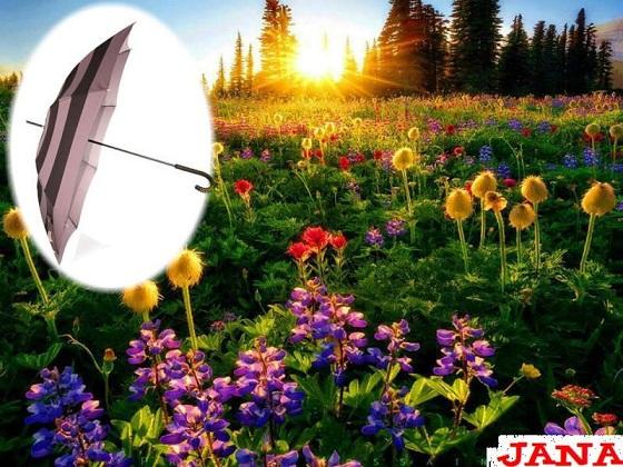 شمسياتي مع اجمل شتاء 338529.jpg
