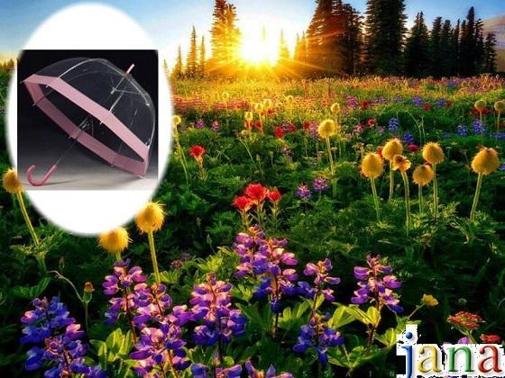 شمسياتي مع اجمل شتاء 338531.jpg