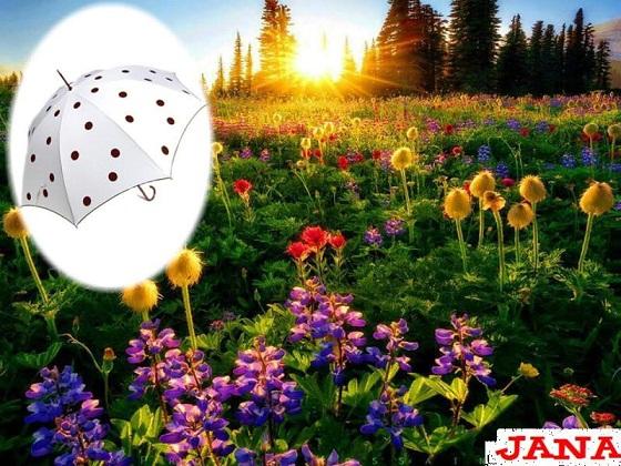 شمسياتي مع اجمل شتاء 338533.jpg