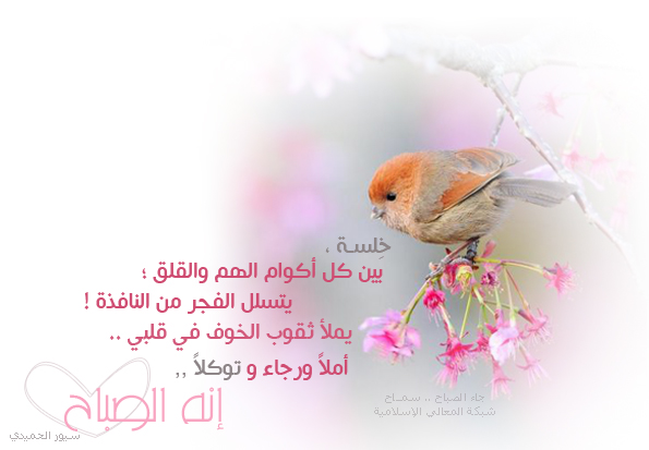 ,,صور رومانسيه 346861.jpg