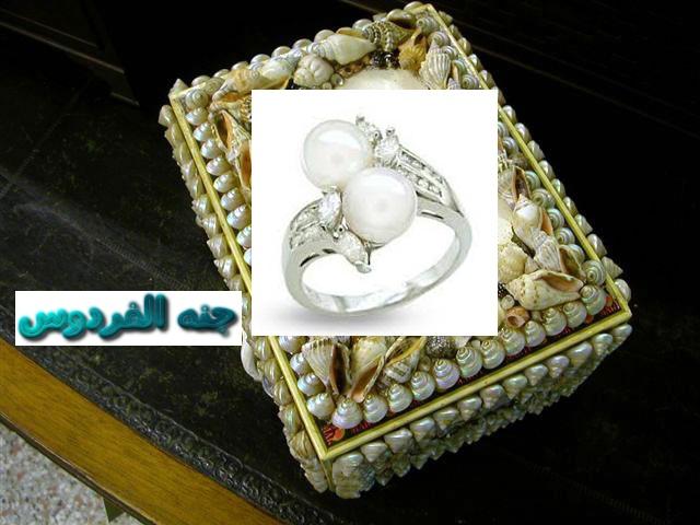 خاتمي اللؤلؤ وصدفه البحر 362935.png