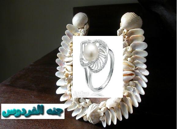 خاتمي اللؤلؤ وصدفه البحر 362945.png