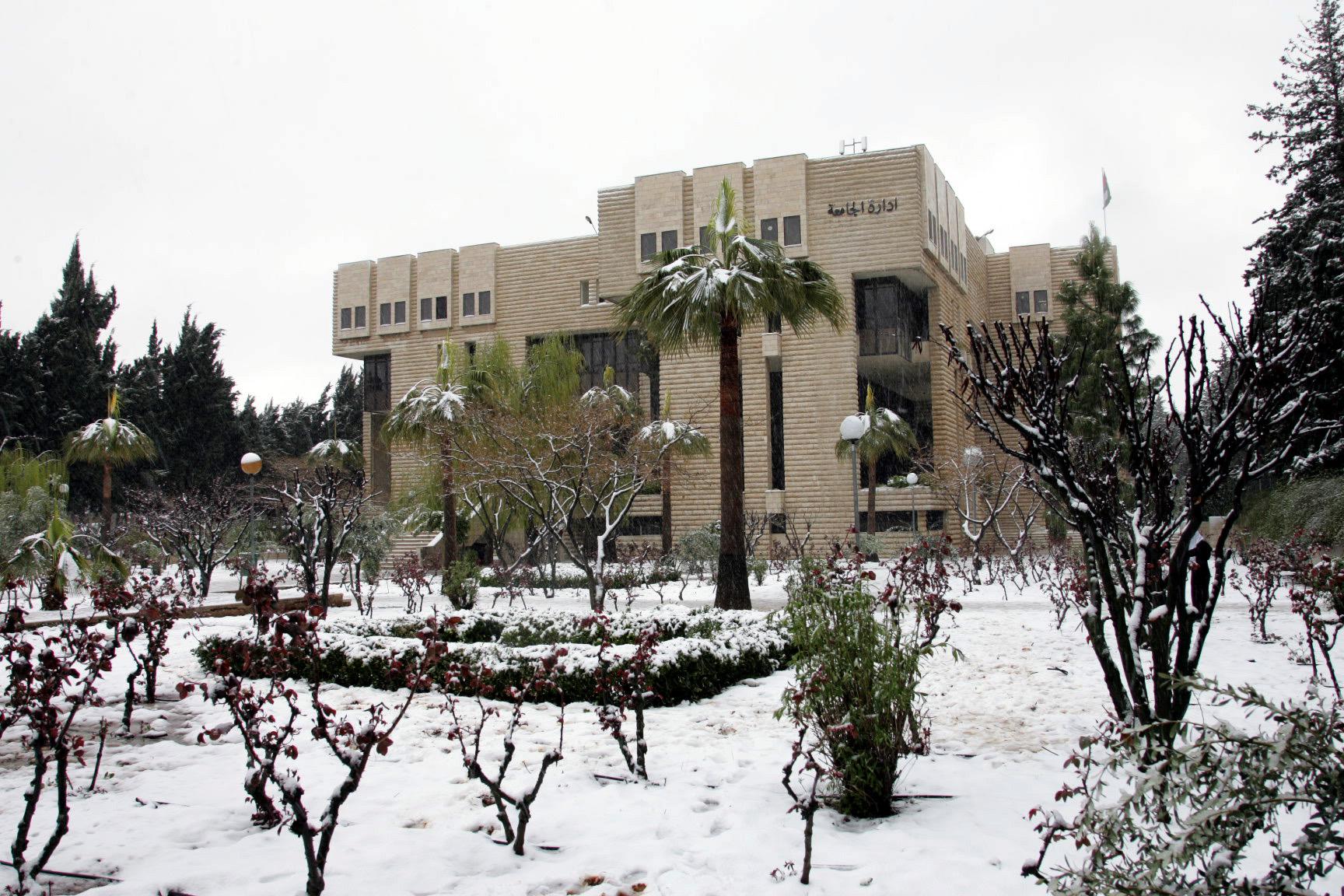 حذائي الوطي الخفيف للجامعه 367008.jpg