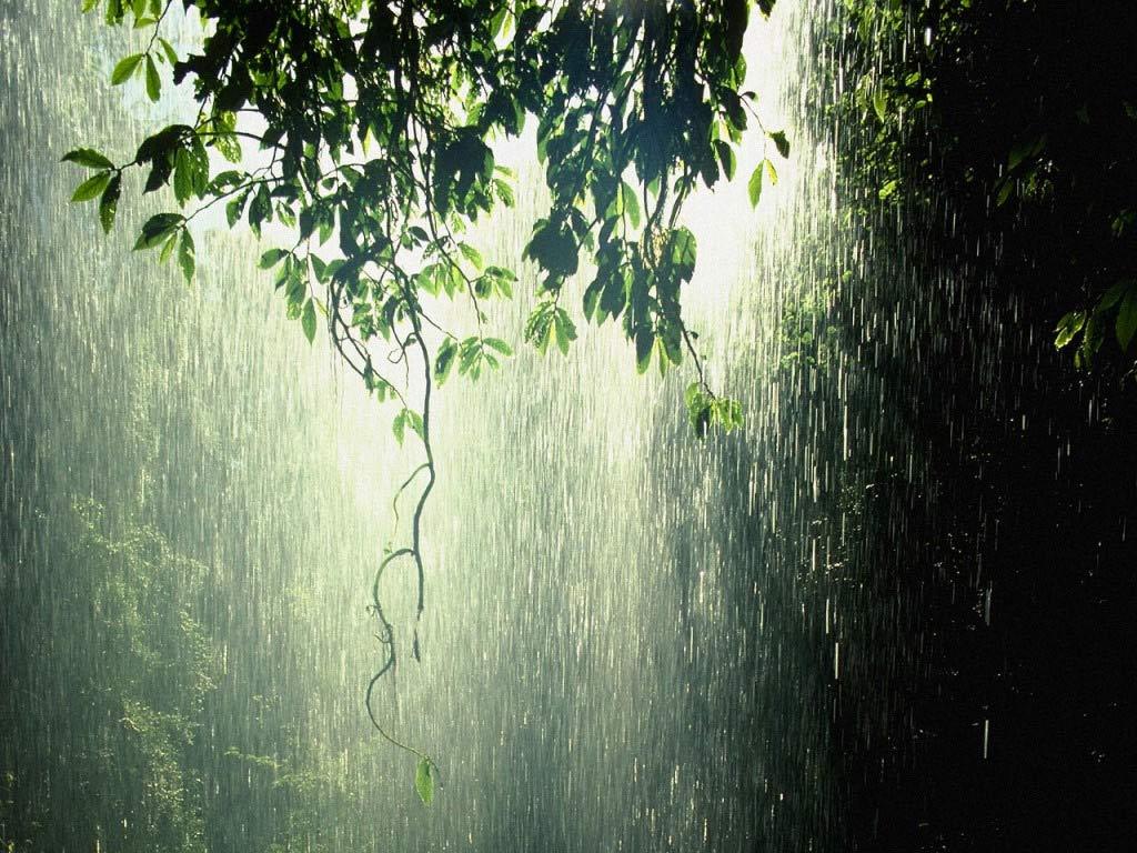 الامطار 371015.jpg