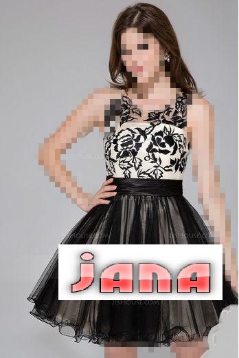 فستاني القصير الشيك 381470.png