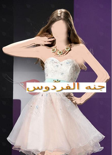 فستاني القصير الشيك 381473.png