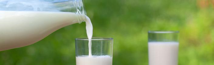 هل يمكن ان يكون شرب حليب البقر في الصغر سبب السكري عندك في الكبر 404301.jpg