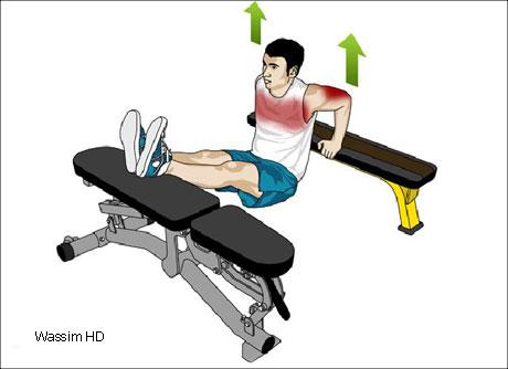 تمارين رياضية لتنحيف الذراعين والزنود 415592.jpg