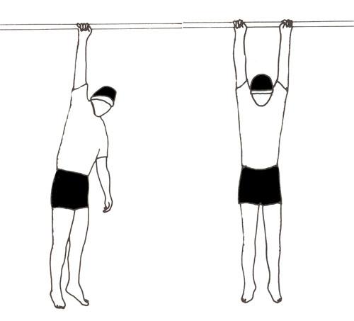 التمارين الرياضية السويدية تحرق الدهون وتقوي العضلات وتشد الترهلات 416928.jpg