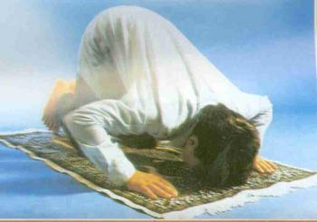 كيف تكون الراحه فى الصلاه ؟ لأنّه لا ينطقُ عن